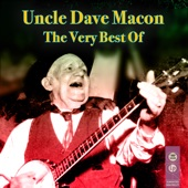 Uncle Dave Macon - Grey Cat On The Tennessee Farm