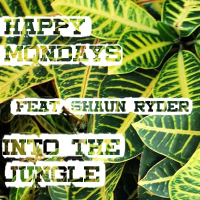 Into the Jungle (feat. Shaun Ryder) - Happy Mondays