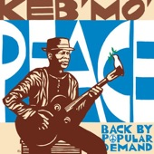Keb' Mo' - For What It's Worth (Album Version)