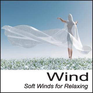 Rain: Soft Rain for Relaxing Rain Sounds, Nature Sounds