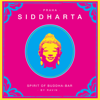 Siddharta, Spirit Of Buddha Bar - Praha - Various Artists