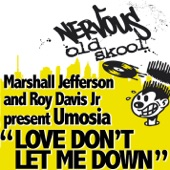 Roy Davis Jr - Love Don't Let Me Down