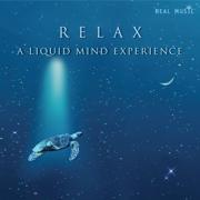 Relax - A Liquid Mind Experience - Liquid Mind - Liquid Mind