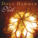 When Christmas Comes to Town - Doug Hammer