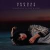 Brooke Fraser - Something In the Water artwork