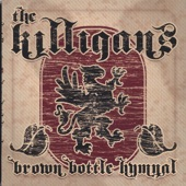The Killigans - Lessons from the Empty Glass