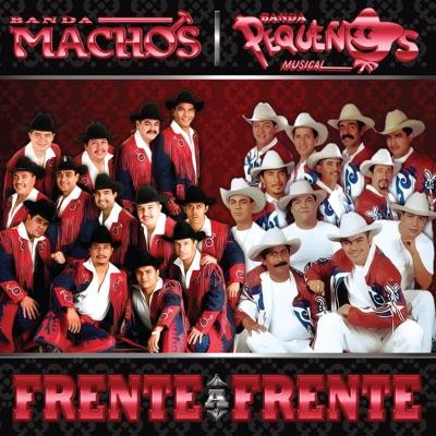 Frente a Frente: Banda Machos & Banda Pequeños Músical - Banda Machos