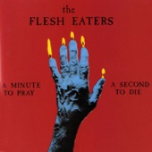 The Flesh Eaters - So Long