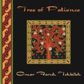 Omar Faruk Tekbilek - Elation