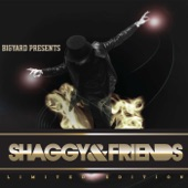 Shaggy & Friends