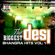 The Biggest Desi Bhangra Hits, Vol. 1 - Various Artists