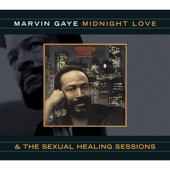 Marvin Gaye - Rockin' After Midnight