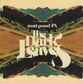 Matt Pond PA - Ruins