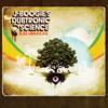 Soul Vibrations - J Boogie's Dubtronic Science