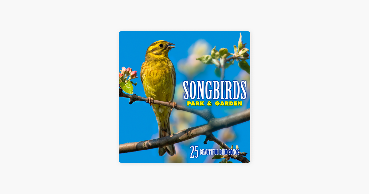 Songbirds: Park & Garden (Over 25 Beautiful Bird Songs & Sounds) by Echoes  Of Nature on iTunes