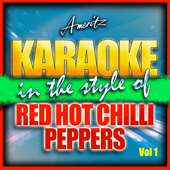 Can't Stop (In the Style of Red Hot Chili Peppers) [Karaoke Version]
