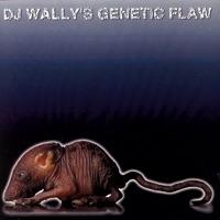 DJ Wally & DJ Swingsett - Dog Leg Left