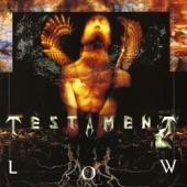 Testament - Shades of War