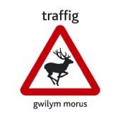Gwilym Morus - Ym Mhont-Y-Pridd