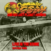 Commander Cody & His Lost Planet Airmen - Riot In Cell Block 9