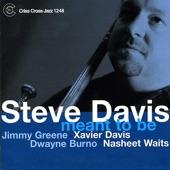 Steve Davis - Blues Across The World