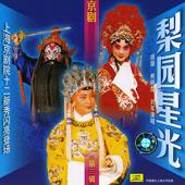 Famous Opera Artists, Vol. 3 (Li Yuan Xing Guang Di San Ji)