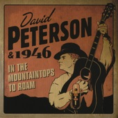 David Peterson & 1946 - In Despair