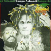 The Congos - Days Chasing Days