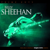 Billy Sheehan - Elbow Grease