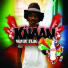 Wavin' Flag (Coca-Cola Celebration Mix) - K'naan