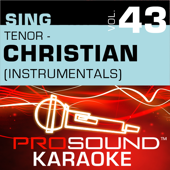 Spoken For (Karaoke Instrumental Track) [In the Style of Mercy Me]