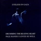 Eyeless In Gaza - Transience Blues