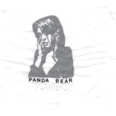 Panda Bear - Last Night At the Jetty