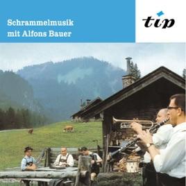 Alfons Bauer - Zither Mit Herz