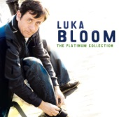 Luka Bloom - You Couldn't Have Come At A Better Time