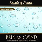 Rain and Wind (Nature Sounds) - Single