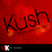 Kush (feat. Snoop Dogg & Akon)