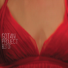 Best of Gotan Project - Gotan Project