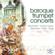 Luigi Fendon & Mari Wittmark - Baroque Trumpet Concerts (Collection)