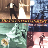 That's Entertaiment - The Best of Musical