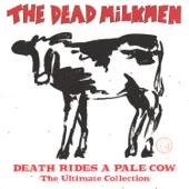 The Dead Milkmen - Punk Rock Girl
