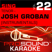The Prayer (Karaoke Instrumental Track) [In the Style of Josh Groban]