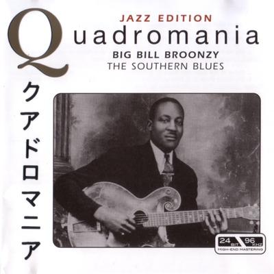 The Southern Blues - Big Bill Broonzy