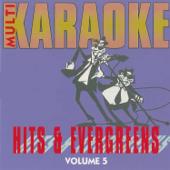 Stumblin' In (Karaoke Version)