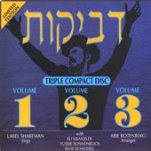 Bshem Hashem artwork