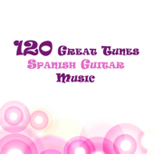 120 Great Tunes : Spanish Guitar Music