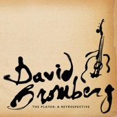 David Bromberg - I Like To Sleep Late In The Morning (Album Version)