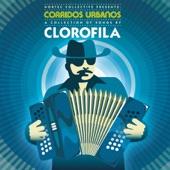 Nortec Collective Presents: Clorofila - Arriba El Novio