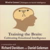 Training the Brain: Cultivating Emotional Intelligence - Richard Davidson & Daniel Goleman