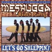 Meshugga Beach Party - If I Were A Rich Man